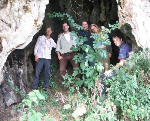 allemaal in de eikenboom